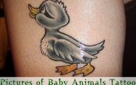 Funny Animal Tattoos 12 Background