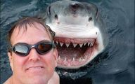 Funny Baseball Selfie 14 Free Wallpaper
