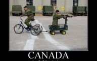 Funny Canadian Celebrities 21 Background