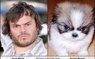 Funny Celebrities Look Alike 9 Background