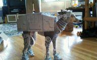 Funny Costume For Dogs 12 Desktop Background