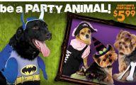 Funny Costumes At Party City 30 Desktop Wallpaper