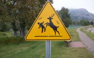 Funny Road Signs 10 Cool Wallpaper