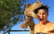 Funny Selfies Fails 28 Background Wallpaper