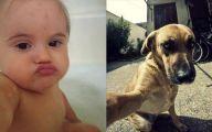 Funny Selfies Memes 3 Free Wallpaper