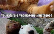 Funny Selfies Memes 8 Cool Wallpaper