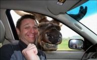 Funny Selfies Pictures 14 Free Hd Wallpaper