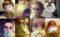 Funny Selfies With Animals 19 Desktop Wallpaper