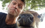 Funny Selfies With Animals 23 Widescreen Wallpaper