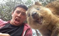 Funny Selfies With Animals 26 Background Wallpaper