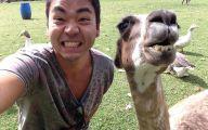 Funny Selfies With Animals 3 Desktop Background