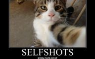 Funny Selfies With Animals 38 Desktop Background