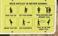 Funny Signs And Pics 9 Background