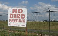 Funny Signs At Airport 24 Free Hd Wallpaper