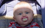 Funny Baby 58 Free Hd Wallpaper