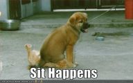 Funny Cartoon Dog Pictures 31 Cool Hd Wallpaper