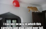 Funny Cat Fail Pics 17 Background