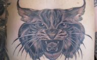 Funny Cat Tattoo On Stomach 17 Background