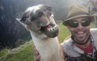 Funny Selfies 262 Background Wallpaper