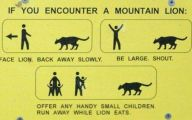 Funny Sign 382 Background Wallpaper