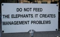 Funny Sign 394 Background Wallpaper