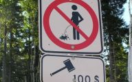 Funny Street Signs 20 Free Wallpaper