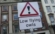 Funny Street Signs 5 Hd Wallpaper