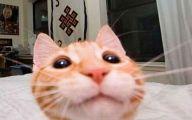 Best Funny Selfies Pictures 8 Widescreen Wallpaper