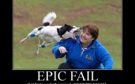 Epic Horse Fail Pictures 19 Free Wallpaper