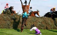Epic Horse Fail Pictures 26 Wide Wallpaper