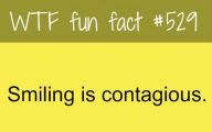 Funny And Weird Facts 1 Cool Wallpaper