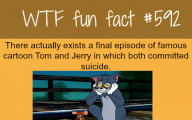 Funny And Weird Facts 11 Background