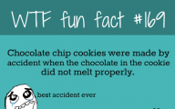 Funny And Weird Facts 16 Desktop Background