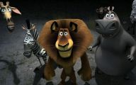 Funny Animals Animation 17 Hd Wallpaper