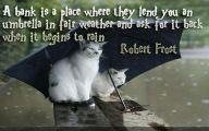 Funny Animals With Funny Sayings 4 Widescreen Wallpaper