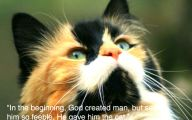 Funny Animals With Quotes 20 Hd Wallpaper