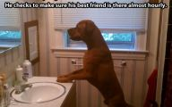 Funny Bathroom Selfies 25 Hd Wallpaper