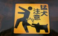 Funny Beware Of Dog Signs 18 Wide Wallpaper