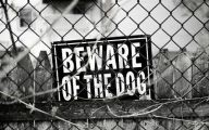 Funny Beware Of Dog Signs 20 Desktop Wallpaper