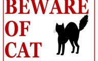 Funny Beware Of Dog Signs 22 Wide Wallpaper