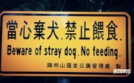 Funny Beware Of Dog Signs 4 Wide Wallpaper