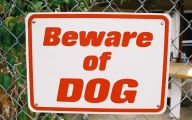 Funny Beware Of Dog Signs 8 Cool Wallpaper