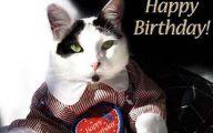 Funny Birthday Cat 5 High Resolution Wallpaper