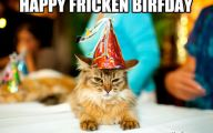 Funny Birthday Cat 6 Background Wallpaper