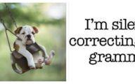 Funny Bones For Dogs 10 Desktop Wallpaper