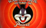 Funny Bugs Bunny Cartoon 11 Hd Wallpaper