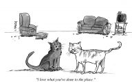 Funny Cartoon Cat 26 Desktop Wallpaper