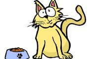 Funny Cartoon Cat Pictures 19 Background Wallpaper