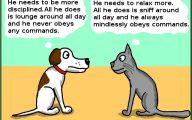 Funny Cartoon Cat Pictures 7 Widescreen Wallpaper