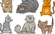 Funny Cartoon Cats 7 Desktop Background